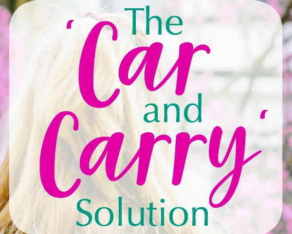 The 2 Diaper Bag System: Car and Carry